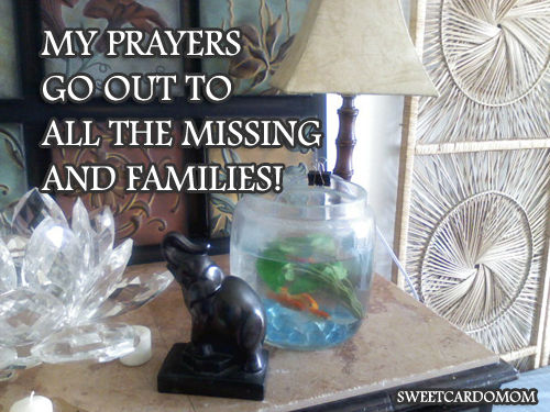 prayers-for-the-missing-2